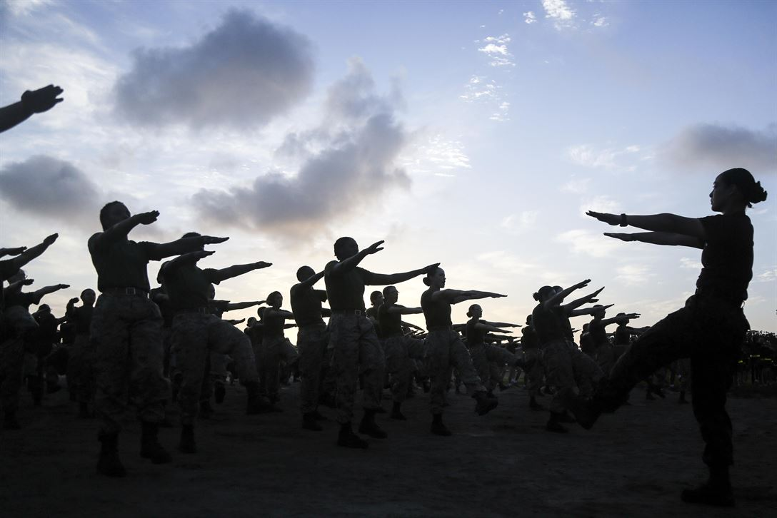 Marine Corps recruits warm up before maneuvering an obstacle course on Marine Corps Recruit Depot, Parris Island, S.C., May, 20, 2017. The recruits are assigned to November Company, 4th Battalion and Hotel Company, 2nd Battalion, The obstacle course tested their strength, agility and endurance. Marine Corps photo by Lance Cpl. Colby Cooper