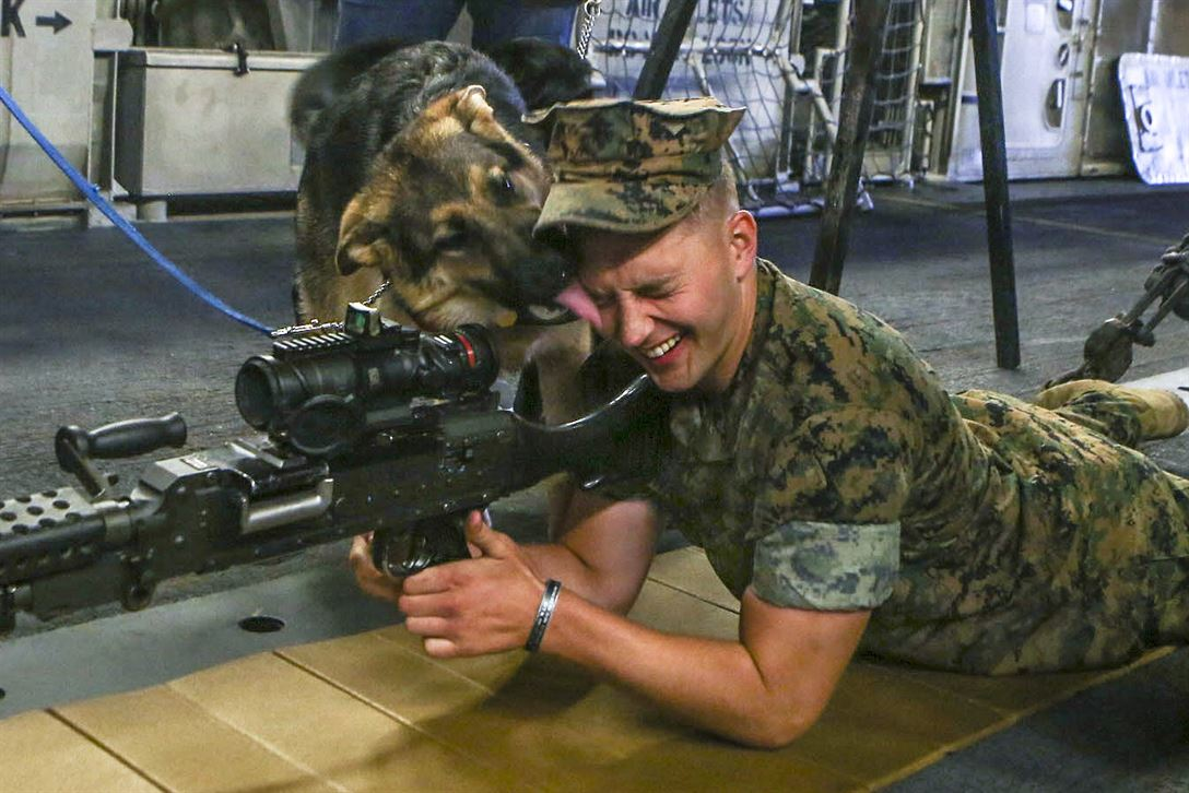 A puppy with the Seeing Eye Dog Puppy Raising Program shows his affection for a Marine during a Fleet Week New York community relations event aboard the USS Kearsarge in New York City, May 25, 2017. Marine Corps photo by Sgt. Olivia McDonald